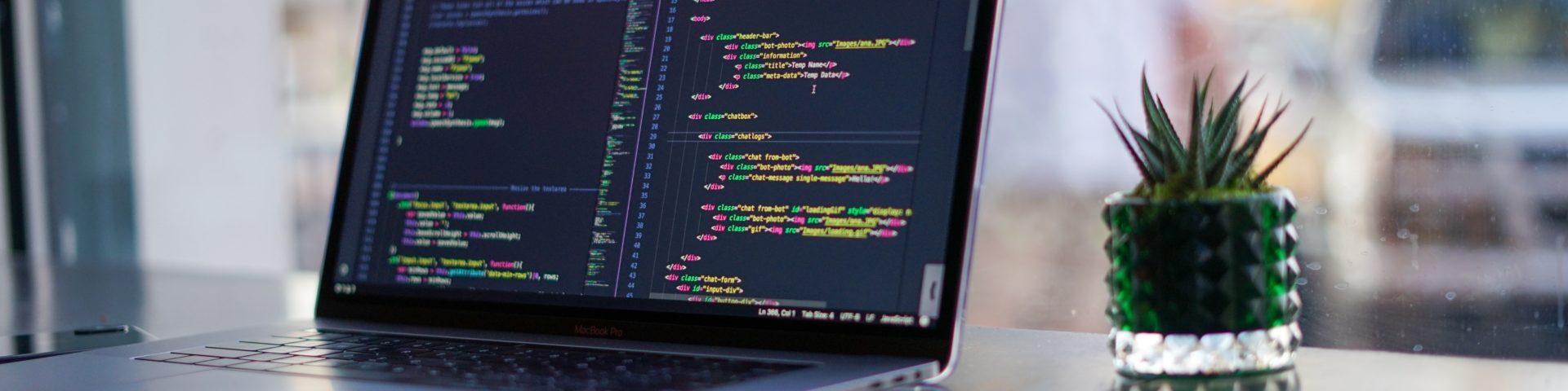 New software developer